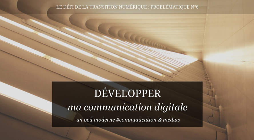Problématique N° 6 : Développer sa communication digitale